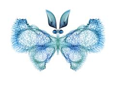 Stock Illustration of Butterfly Elegance