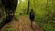 Stock Video Footage of Man hiking in the forest