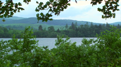 Loch framed by branches and plants violently shaken by wind Stock Footage