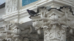 Dove on the capitals of the columns. 4K. Stock Footage