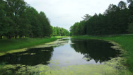 Lake, pond. Pushkin. Catherine Park. Tsarskoye Selo. 4K. Stock Footage