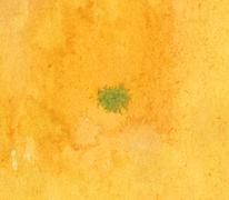 Green watercolor blot on the yellow painting Stock Illustration