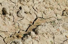 arid dry soil during a famine in drought without water - stock photo