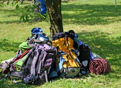 Backpacks of boy scouts around the tree during an excursion Stock Photos