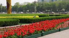 Gardens in tiananmen square beijing china Stock Footage