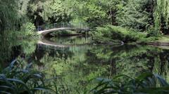 34 Park idyll. A bridge over pond lake. - stock footage