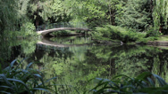 Stock Video Footage of 34 Park idyll. A bridge over pond lake.