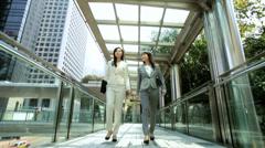 Young American Asian Chinese Girls Business Financial Executives Stock Footage
