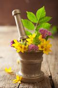 Mortar with flowers and herbs for spa and aromatherapy Stock Photos