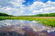 Stock Photo of wetlands in the province of drenthe, the netherlands