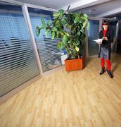 Happy businesswoman throwing documents Stock Photos
