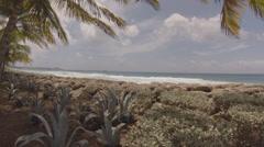 Barbados sea-walk near the the cruiseship terminal Stock Footage