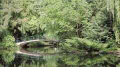 33 Park idyll. A bridge over pond lake. - stock footage