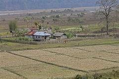 Stock Photo of Tribes House, Arunachal Pradesh, India