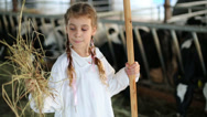 Stock Video Footage of little girl in robe holds hay for cows and shovel at stall.