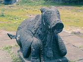 Stock Photo of Statue of Nandi at a Temple, Saswad, Pune, Maharashtra, India