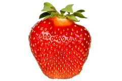 Red berry strawberry isolated Stock Photos