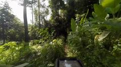 Mountain Biking Single Trail Stock Footage
