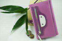 Stock Photo of the purple wallet