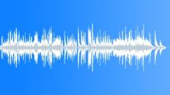 Chopin Sonata No. 3 in B minor, Op. 58 - 3. Largo (1:41) - stock music