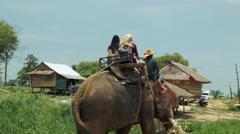 Thailand Elephant Tour Stock Footage
