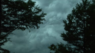 Stock Video Footage of thunderstorm, ominous, time lapse, framed by two trees in foreground