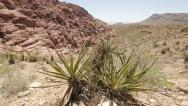 Desert mountains in Red Rock Canyon Stock Footage
