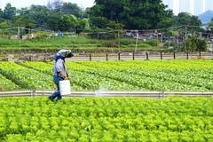 Cultivated land and farmer spraying - stock photo