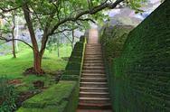 Stock Photo of stairway in Sigiriya Castle