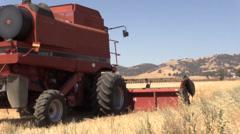 Farm, Harvesting wheat field, wheat chafe  Stock Footage
