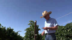 Farm, Vineyard owner testing Stock Footage
