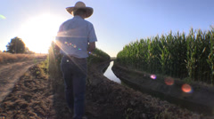 Farming ,drought and water , sunrise Stock Footage