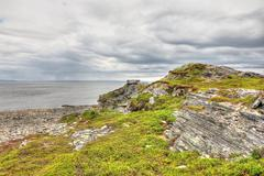 Northern Norwegian landscape - stock photo
