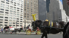 Horse Buggy Rides Central Park New York City Stock Footage