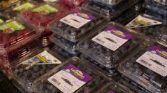 Organic Blackberries and Strawberries Stock Footage