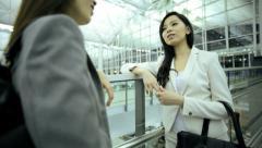 Females Ethnic Airport Flight Passenger Business Corporate Meeting Stock Footage