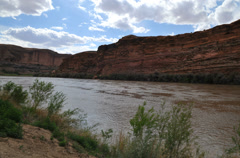 Campground colorado river timelapse Stock Footage