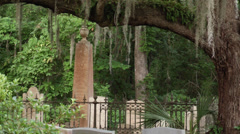 Hanging moss historic tomb stones cast iron fence Stock Footage