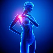 Anatomy of female Shoulder pain in blue - stock illustration