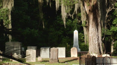 Historic cemetery sc lowlands spanish moss Stock Footage