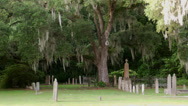 Stock Video Footage of historic cemetery zoom in spanish moss eerie tree