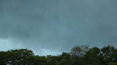 Storm clouds brewing over a green forest in summer Stock Footage