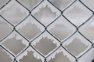 Stock Photo of frost
