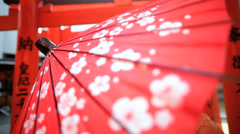 Female Asian Japanese Traditional Kimono Parasol Gardens Outdoors Stock Footage