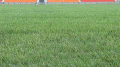Grassy field empty stadium Stock Footage