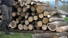Timberjack person proud of stacked logs Stock Footage