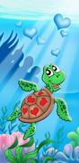 Merikilpikonnien sydämen Piirros