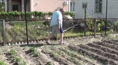 Gardener controls his seedings Stock Footage