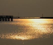 Sunset at Cape Henlopen State Park, Delaware - stock footage