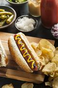 gourmet grilled all beef hots dogs - stock photo